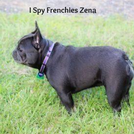 Zena-min
